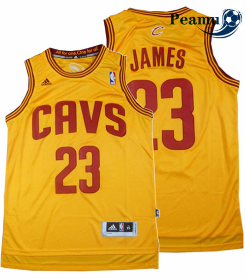 Peamu - LeBron James, Cleveland Cavaliers - Classic Alternate